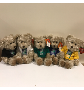 Radcliffe World Cup Bears