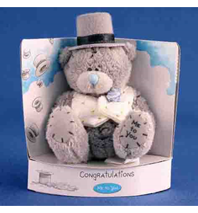 Tatty Teddy Groom
