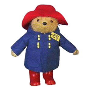 Paddington Long Haired